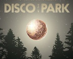 Disco at the Park