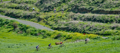 Athalassa National Forest Park Cycling Route