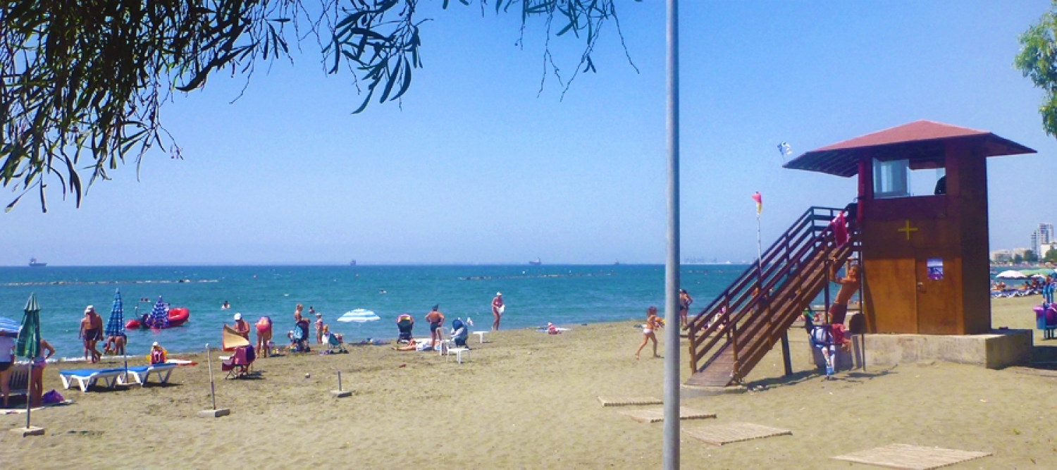 Dasoudi Beach - Blue Flag