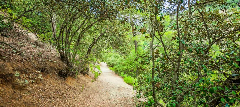Panagia tou Araka - Stavros tou Agiasmati (Linear) - Lefkosia (Nicosia) District, Adelfoi Forest Nature Trail